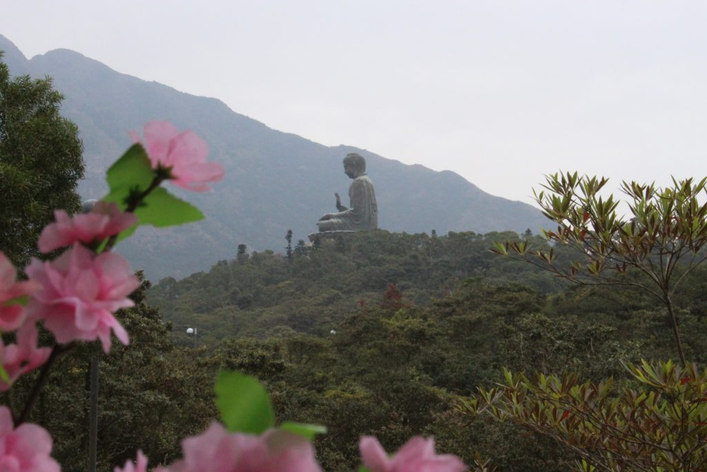 Big Buddha distance