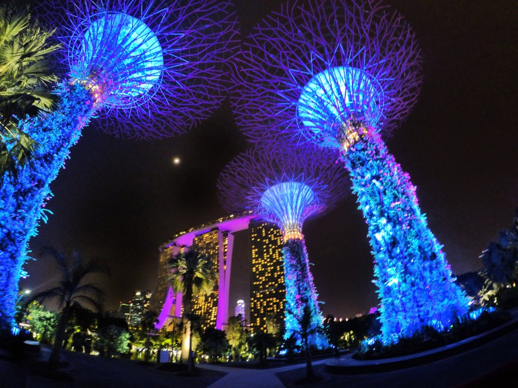 Layover in Singapore Gardens by the Bay