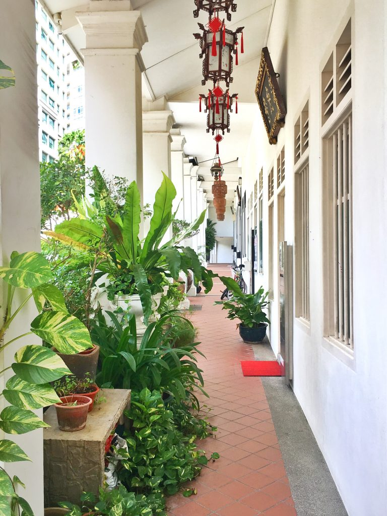 Layover in Singapore shophouse side street