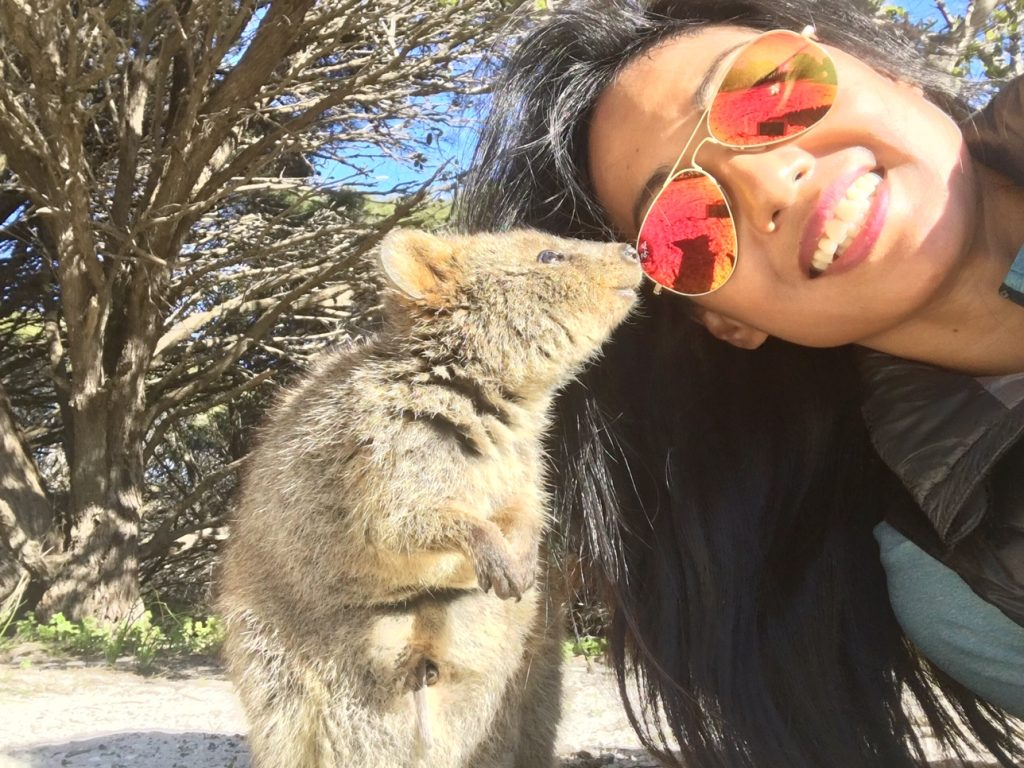 Quokkas selfie on Rottnest